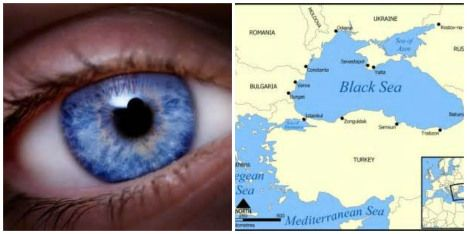 Geneticists Uncover the Origin of Blue Eyes