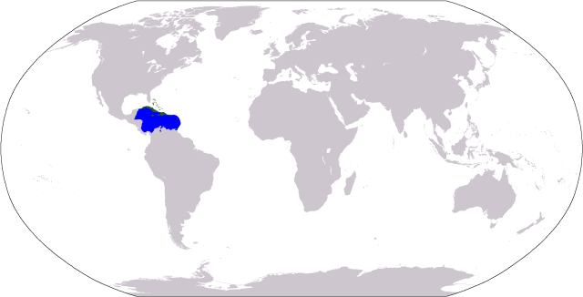 caribbean wold map