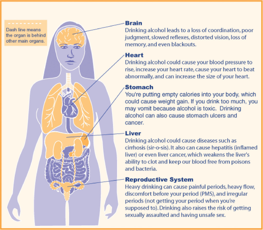 effects of alcohol on the human
