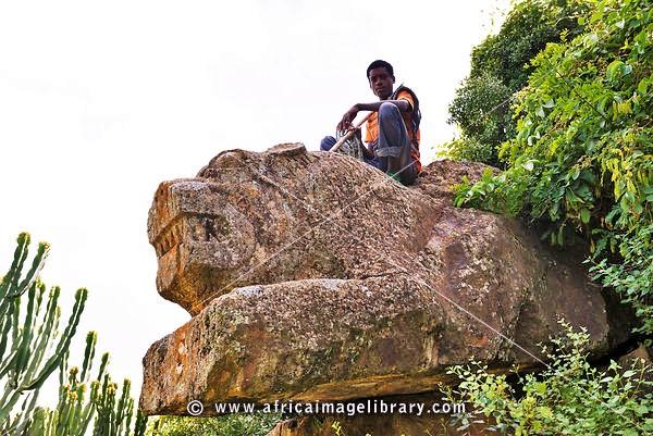 Geta Lion, near Kombolcha, Ethiopia