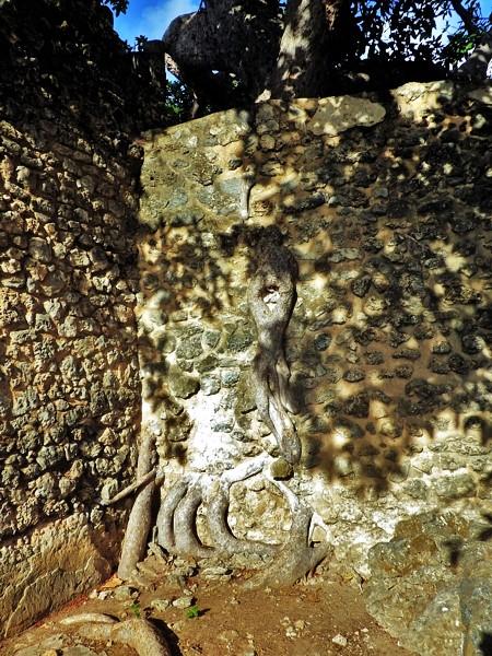 kilwa ruins tanzania 05