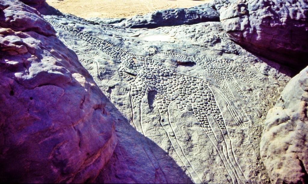 Ancient city of Djado rock art