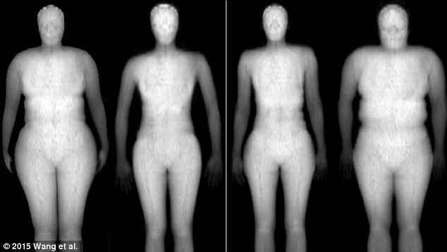 body fatness different body shapes