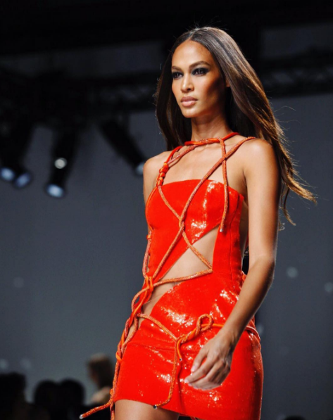 joan smalls photo 18