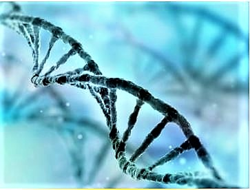 Science: DNA Of Your Ancestors
